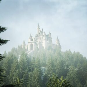 A castle in the forest